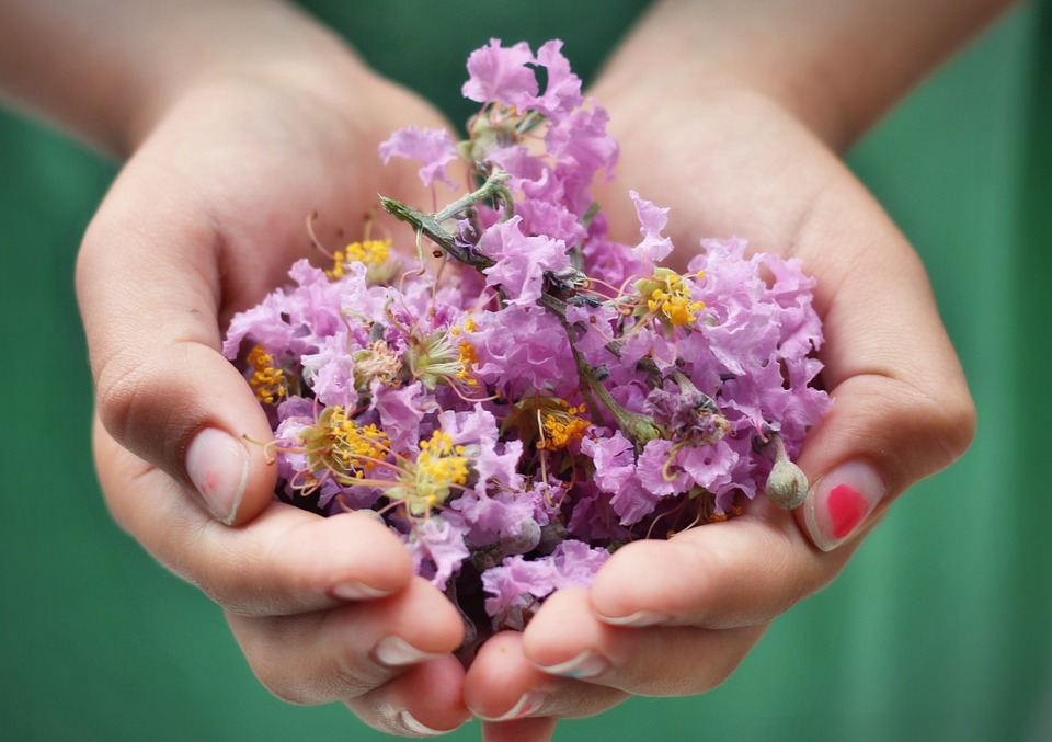 The Incredible Benefits of Gardening for Children