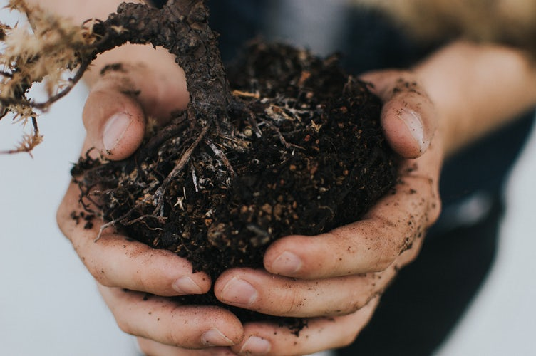 Compost With Your Kids – Here's How They'll Benefit!